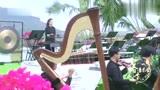 这段《紫竹调》演奏,真的是沁人心脾!