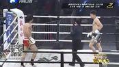 武林风20150328 武林风环球拳王争霸赛平顶山站