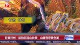 甘肃甘州 航拍祁连山秋景 山路弯弯景色美