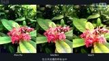 「ZEALER出品」三星 Galaxy Note 4 测评-ZEALER深度测评-ZEALERChina