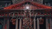 【农场主与猪 #vlog.07】ChristmasInSydney/ 维多利亚女王大厦/ 马丁广场巨大圣诞树/ 圣母主教座堂灯光秀