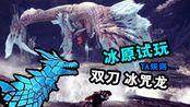 【试玩首日/TA规则】双刀ta冰咒龙12分33秒-疾风狩猎团-怪物猎人-冰粥龙-双剑