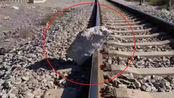 醉汉不满火车噪音在铁轨上放巨石,79岁大爷狂奔百米救下一辆火车