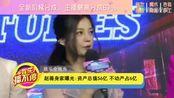 赵薇身家曝光:资产总值56亿 不动产占6