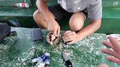 彡彡九户外339直播录像2019-08-15 18时16分--19时56分 宝藏男孩的海岛假日生活