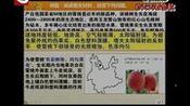 地理工农业区位(1) 免费科科通 搜索看系列天天看余