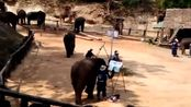 视频-泰国象:用我的山水画天赋征服你!未来的国画大师在这里!