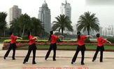 海之韵广场舞  红蔷薇[字幕版] - 舞蹈教程