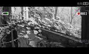 废墟之美:邦吉拉疗养院