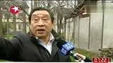 浦东:傅雷故居将修缮计划三到四年完工
