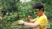 高配版CS 激光射击游戏