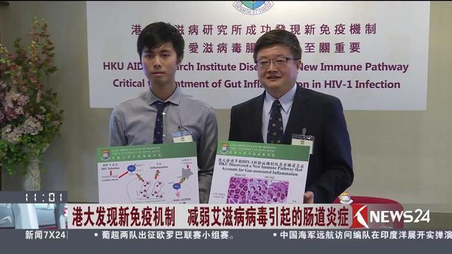 港大发现新免疫机制 减弱艾滋病病毒引起的肠道炎症