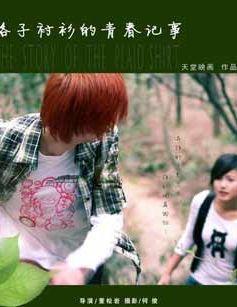 格子衬衫的青春记事(爱情片)