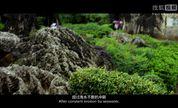北京国际微电影节《下一站去哪里》