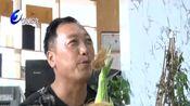 叶县:电商助农增收致富