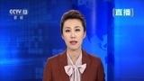 南苏丹一架小型飞机坠毁 中国维和部队参与救援 - 搜狐视频