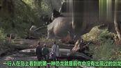侏罗纪公园2失落的世界,一起来了解下吧,不要错过啊