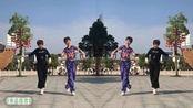 经典38步鬼步舞《布达拉宫》动感时尚,好听好看
