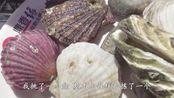 69元团购的海鲜自助火锅,扇贝大螃蟹随便吃,最后却感觉太亏了!