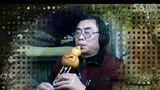 片段 金色的孔雀 自录-金色的孔雀