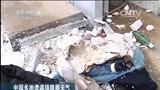 中国多地遭遇强降雨天气