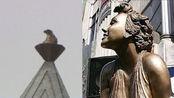 好莱坞大道25年梦露雕像凌晨被盗,目击者:盗贼用钢锯割下雕像