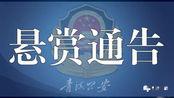 青海警方继续悬赏通缉28名涉黑涉恶在逃人员