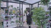亲爱的味道:陆毅郭采洁教科书版料理登场!重温舌尖美食!