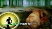 1312灞桥柳中独