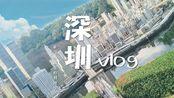 【VLOG】深圳旅拍丨跨越一整个中国去遇见的城市