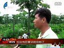视频: 汕头今日视线 2012年5月23日 e居房产网