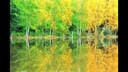 音画欣赏班得瑞经典典藏音乐——New Morning(流畅)[20]www.whwise.com