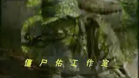 张国强——我的团长mtv