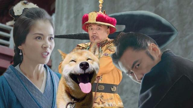 是否禁止吃狗肉引争议,吴秀波刘涛军师联盟大打出手!