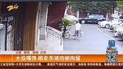 中国蓝TV新闻:大伯嘴馋 顺走东坡肉被拘留