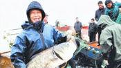 三峡大坝蓄水量这么多,里面生长的鱼永不打捞吗?听听专家怎么说