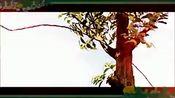 迷失印度电影 巴霍巴利王 開端 帕拉巴斯