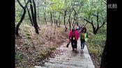 走进森林公园_01y7udr