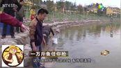 致富经:农村小伙生财有道,十万斤鱼任你抢!