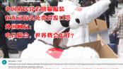 外国网友围观中国侨民身着熊猫装在东京街头免费分发口罩