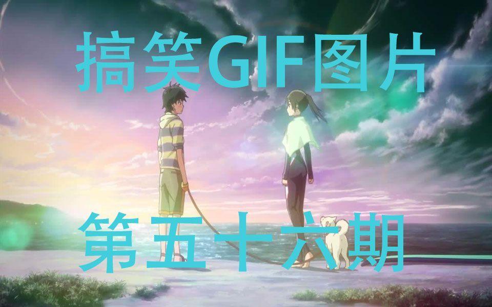 【富江酱】GIF动态图片搞笑视频第五十六期