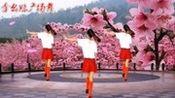 广场舞歌曲《桃花运》好听又好看,一学就会!