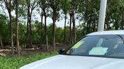 宝马全新行政轿车,颜值看懵奥迪A8,豪华不输奔驰S级!