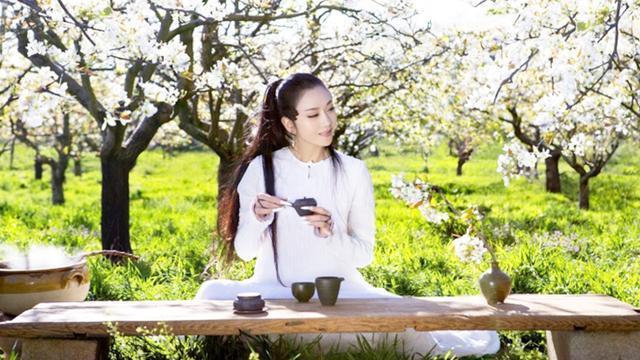 孔雀仙子杨丽萍,生活纯粹自然家里美的像仙境
