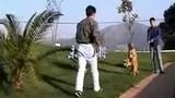 帮助高加索犬适应环境的方法
