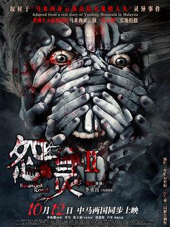 怨灵2(恐怖片)