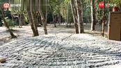 荔波丨旅游精华丨小七孔景区全景视频