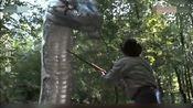 大蛇对大蟒:男子野外打猎,竟然遇上这么大一条蟒蛇!