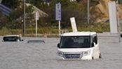 """台风""""博罗依""""致日本10人遇难 半数死于车中"""
