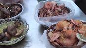 试吃云南野生菌,你吃过几种?有没有吃到有毒的呢